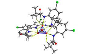 chemia supramolekularna anionow