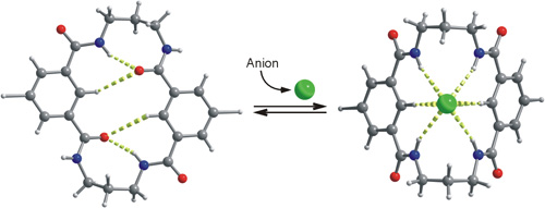 Fig 11b_ChemEurJ 2006_TOC_Anion Binding vs Intramolecular hydrogen bonding
