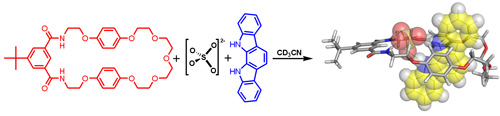 Fig 8b_ChemCommun_TOC_Sulfate anion templation of a neutral pseudorotaxane assembly